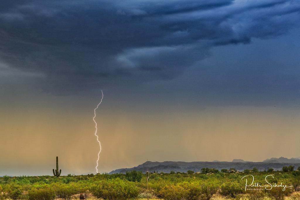 Monsoon-20150812-1131.jpg