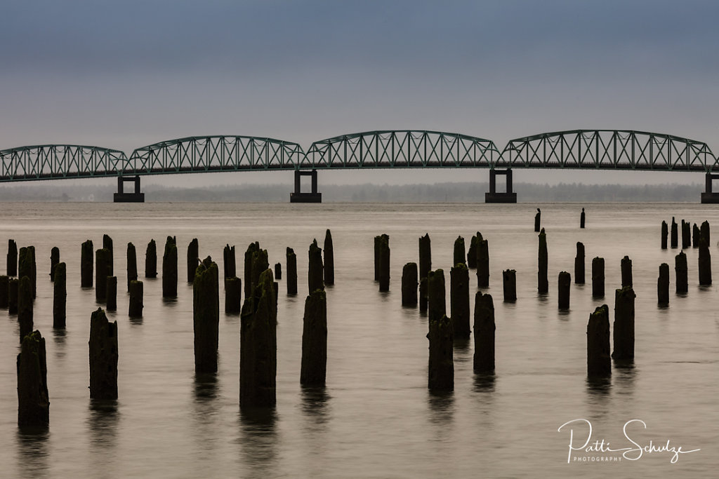 Astoria Bridge and Pilings