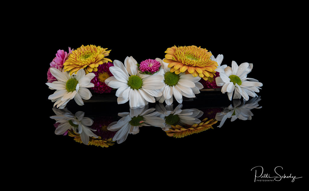 Flower Reflections